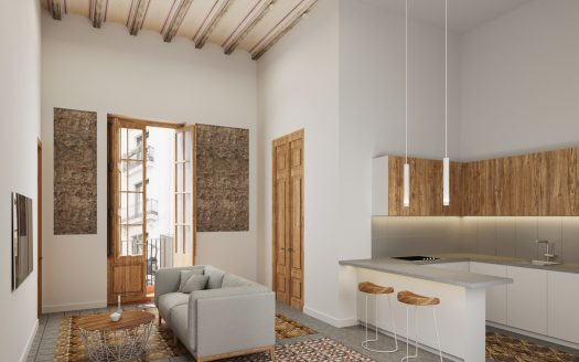 Barcelona Gothic Quarter Historical flat in monument building